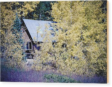 Cabin Hideaway Wood Print by James BO  Insogna