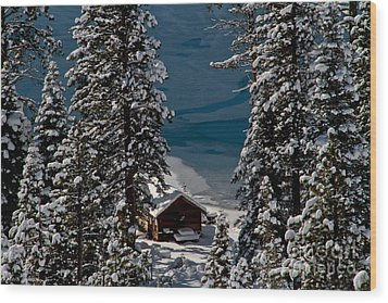 Cabin In The Woods Wood Print by Mitch Shindelbower