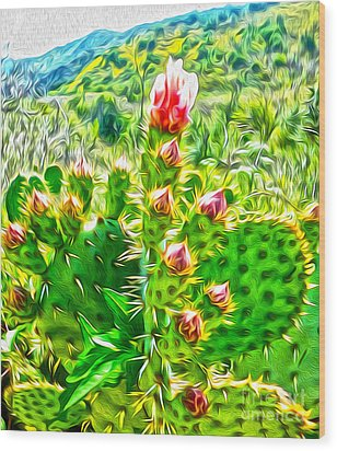 Cactus Flower Wood Print by Gregory Dyer