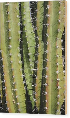 Cactus Wood Print by Jodie Coston