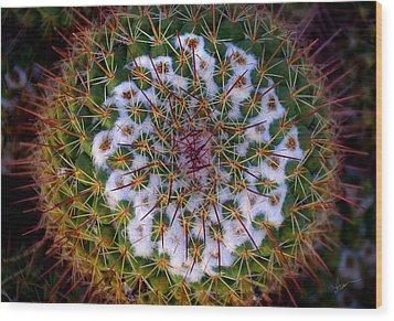 Cactus Radiance Wood Print