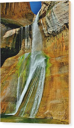 Calf Creek Falls II Wood Print