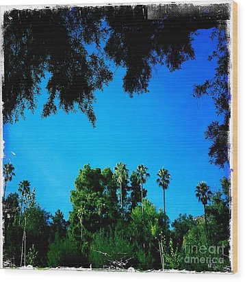 California Dreaming Wood Print by Nina Prommer