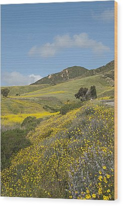 California Hillside View I Wood Print