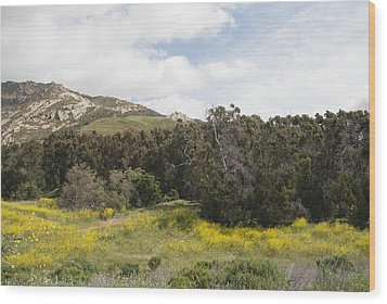 California Hillside View IIi Wood Print