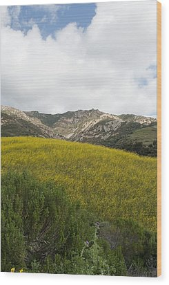 California Hillside View V Wood Print