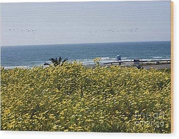 California Wildflowers Wood Print by Daniel  Knighton