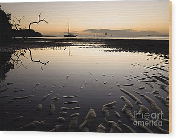 Calm Harbor At Dusk Wood Print by Matt Tilghman