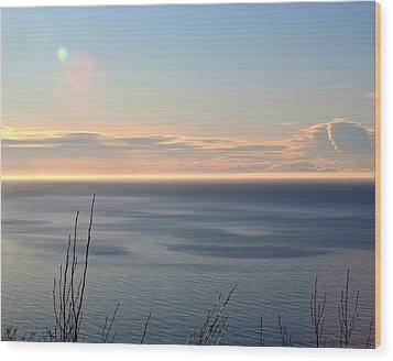 Calm Sea Wood Print by Michele Cornelius