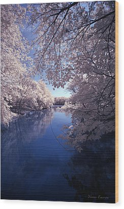 Wood Print featuring the photograph Calm by Yvonne Emerson AKA RavenSoul