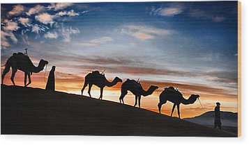 Camels - 2 Wood Print by Okan YILMAZ