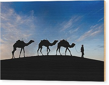 Camels - 3 Wood Print by Okan YILMAZ