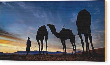 Camels  Wood Print by Okan YILMAZ
