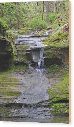 Camusfearna Gorge 1 Wood Print by Peter  McIntosh