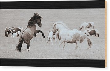 Wood Print featuring the photograph Can We Do This by Rima Biswas