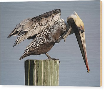 Can You Hear Me Now Wood Print by Paulette Thomas