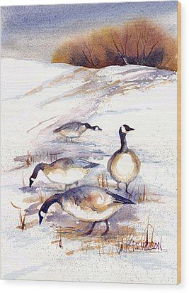 Canada Geese In Stubble Field Wood Print by Peggy Wilson