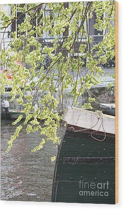 Wood Print featuring the photograph Canal Scene  by Rogerio Mariani