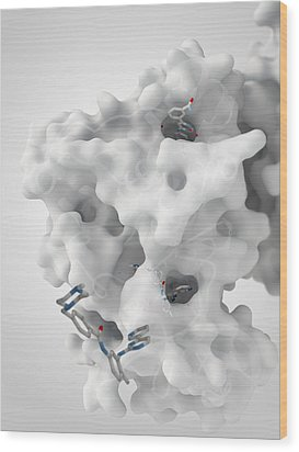 Cancer Protein And Drug Complex Wood Print by Ramon Andrade 3dciencia