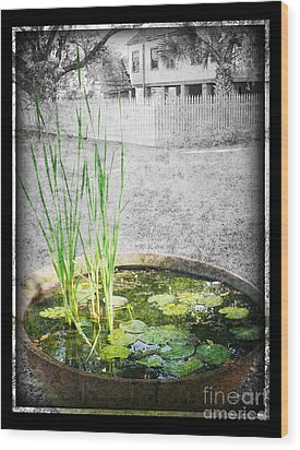 Wood Print featuring the photograph Cane Pot And Water Lily by Jeanne  Woods