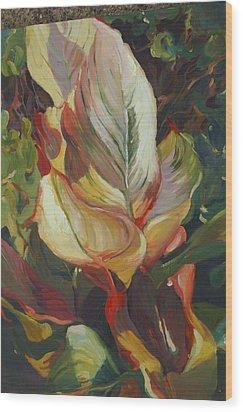 Canna In Light Wood Print by Elizabeth Taft