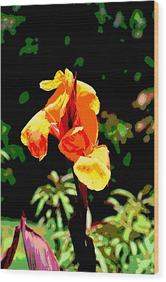 Canna In Summer Wood Print by Dorrie Pelzer