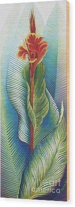 Canna Striata Wood Print