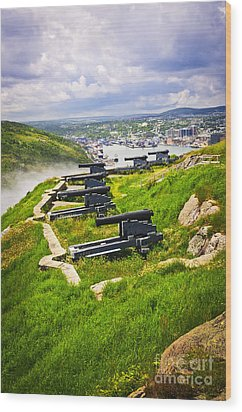 Cannons On Signal Hill Near St. John's Wood Print by Elena Elisseeva