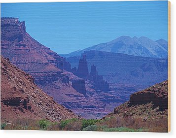 Canyon Colors Wood Print by Dany Lison