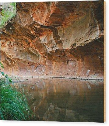 Canyon Wall Wood Print by Cassandra Lemon