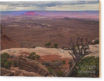 Canyonland Overlook Wood Print by Robert Bales
