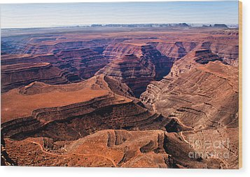 Canyonlands II Wood Print by Robert Bales
