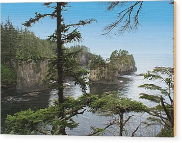 Cape Flattery Wood Print by Christy Leigh