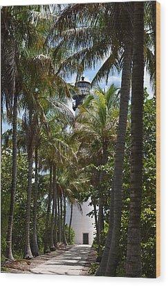 Cape Florida Lighthouse Wood Print by Brenda Thimlar