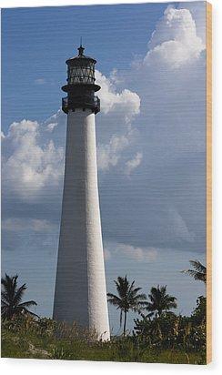 Cape Florida Lighthouse Wood Print by Ed Gleichman