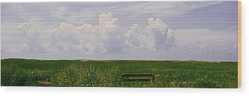 Wood Print featuring the photograph Cape Marsh by Michael Friedman