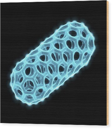Capped Nanotube, Molecular Model Wood Print by Laguna Design
