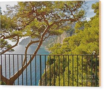 Capri Panorama With Tree Wood Print