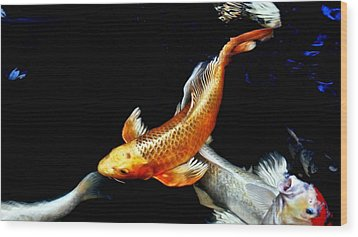 Captain Koi Wood Print by Don Mann