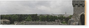 Cardiff Castle Panorama Wood Print