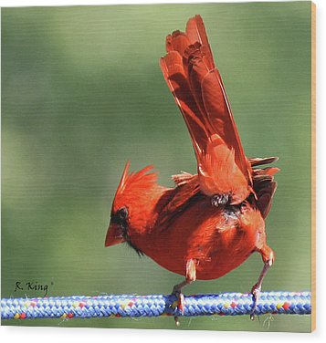 Wood Print featuring the photograph Cardinal-a Picture Is Worth A Thousand Words by Roena King