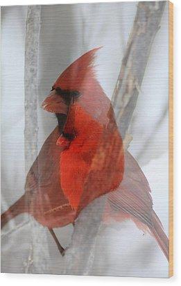 Cardinal Collage Wood Print by Rick Rauzi