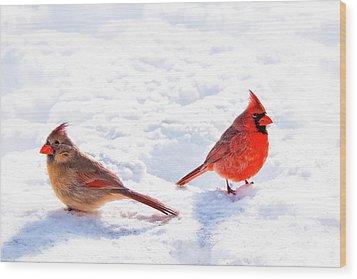 Cardinal Couple Wood Print by Tamyra Ayles