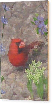 Cardinal Springtime Wood Print by Debra     Vatalaro
