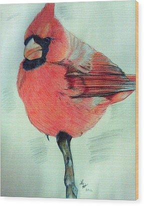 Cardinal Study Wood Print