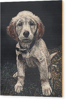 Carmen The Puppy Wood Print by Robert Goudreau