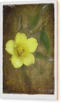 Carolina Jessamine Wood Print by Judi Bagwell
