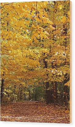 Carpet Of Leaves Marks The Path Wood Print by Bruce Bley