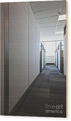 Carpeted Hall With Office Cubicles Wood Print by Jetta Productions, Inc
