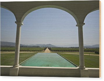 Casablanca Valley, A Wine Growing Wood Print by Richard Nowitz